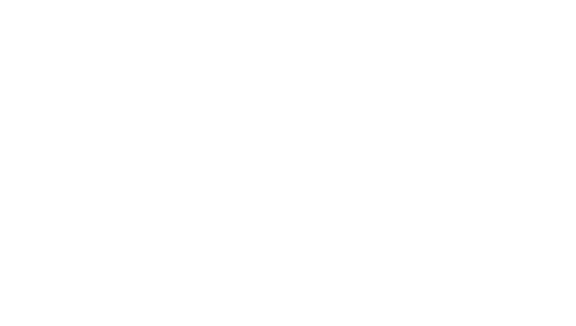 cannondale.png